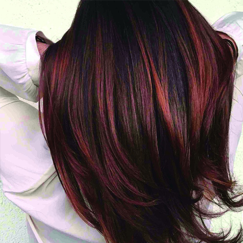 Global Hair Color in Rani Bagh